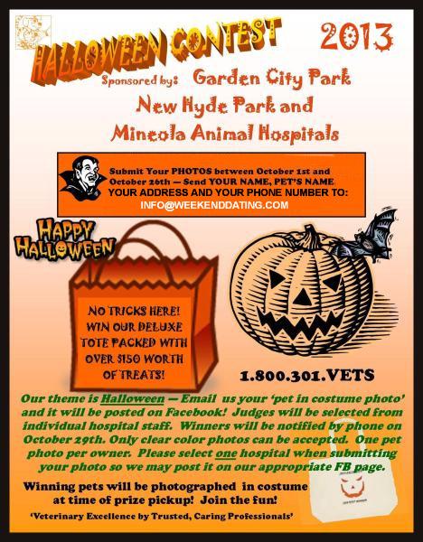 Long Island Veterinarians Long Island Animal Hospital